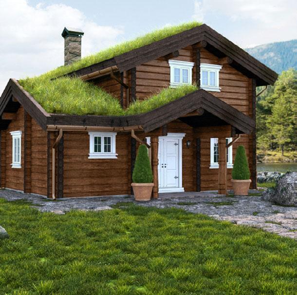 Log house LC 132 angle